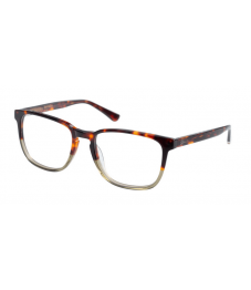 Superdry SDO Barnaby - Glasses Online