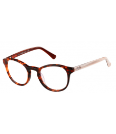Superdry SDO Chie - Glasses Online